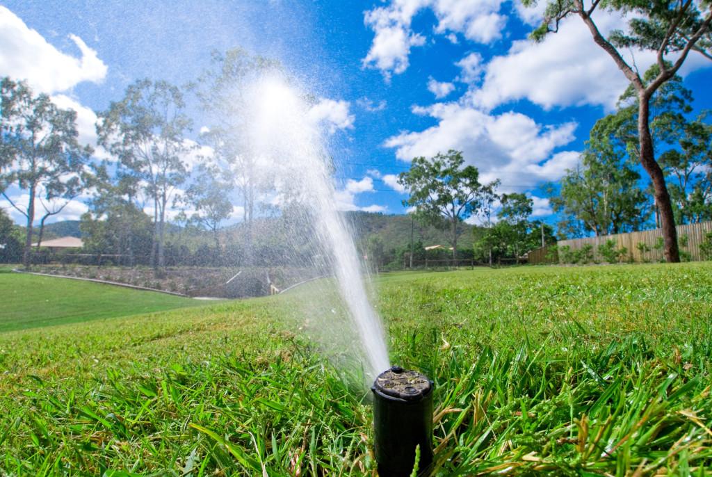 Система полива дождеванием и капельное орошение