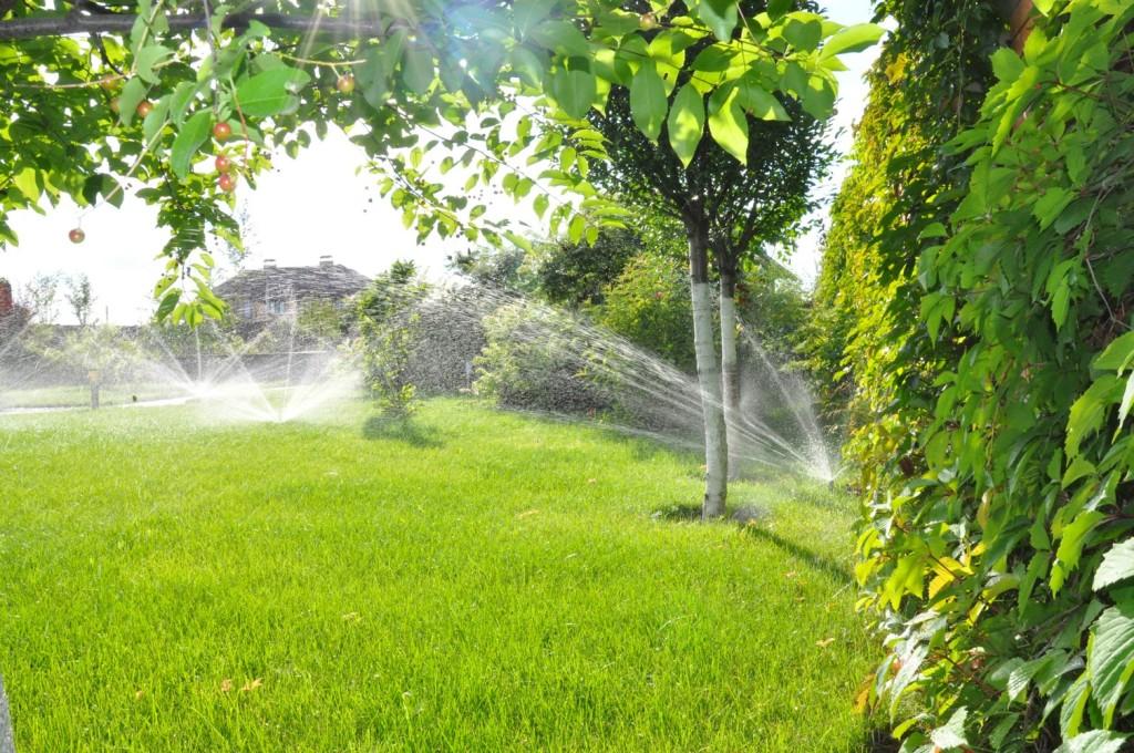 Автоматический полив и система автоматического полива