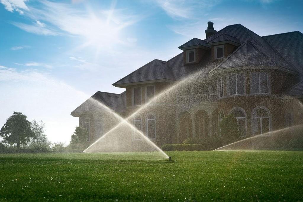 Вода для системы автоматического полива растений
