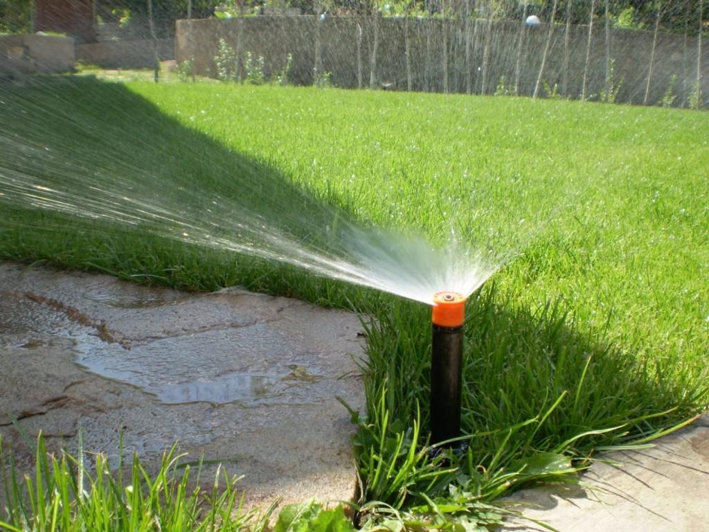 Технические ошибки монтажа системы автоматического полива растений